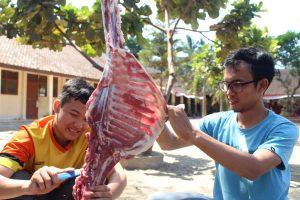 HMI Cabang Sleman Salurkan Hewan Qurban di Gesing, Gunung Kidul.